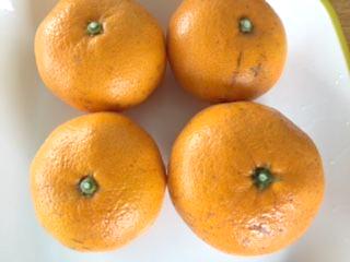 orange_007_m